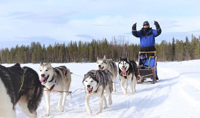 In Lappland die Seele baumeln lassen