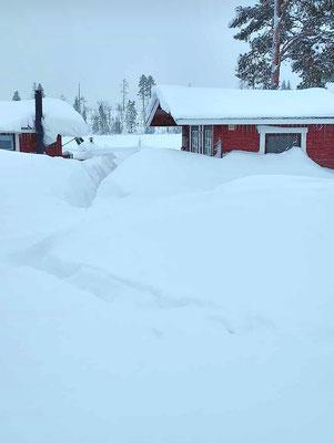 Huskyfarm im Schnee, Lapplands Drag