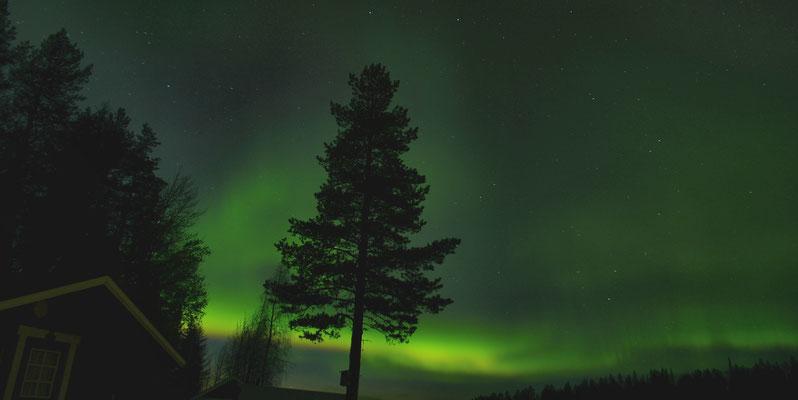 Polarlichter Show in Schweden