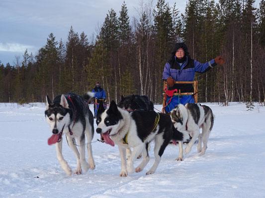 Winter in Schweden erleben
