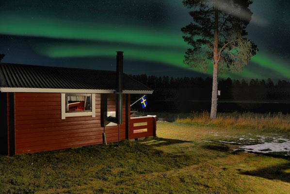Norrsken över huskyfarmen in Lappland