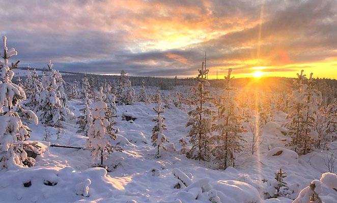 Winter, Schnee und Schweden