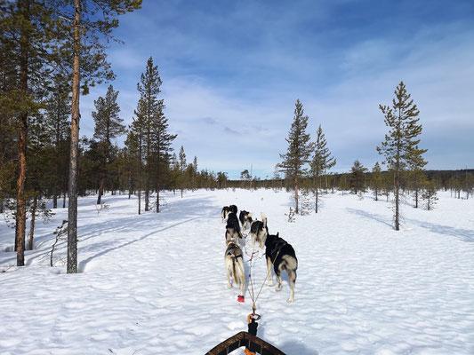 Skandinavien Winterurlaub