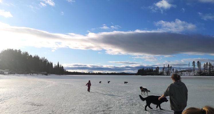 Der April kann so wunderschön sein hier bei uns in Lappland