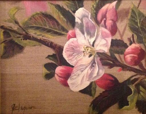 PERLES DE POMMIER, oil on linen canvas 8 x 10 (22cm x 25cm)