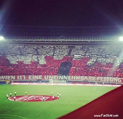 Choreo im ernst-Happel Stadion. Foto: Stefan Blümel (via Facebook).