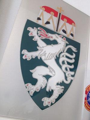Steirischer Panther, Wappen Schild