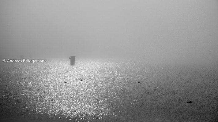Nebel in Kiel