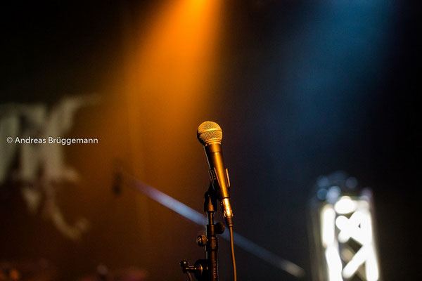 the microphone_1