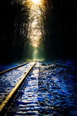 Winter light_9