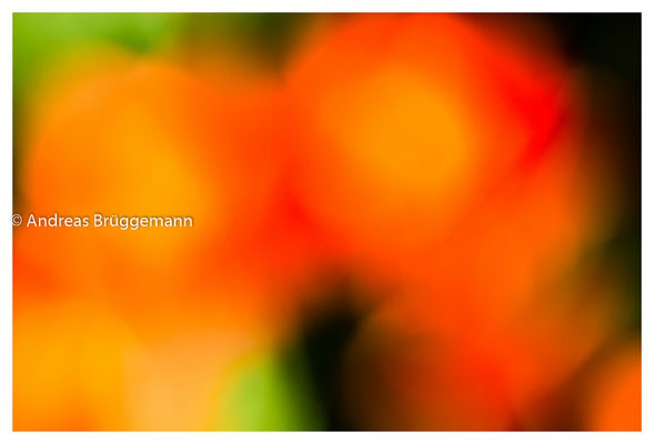 natural colors_02