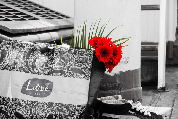 red flower_1