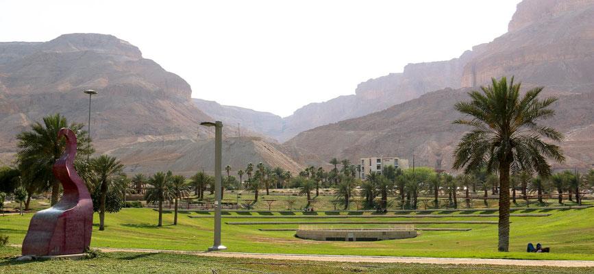 grüne Wiese grenzt an Wüste