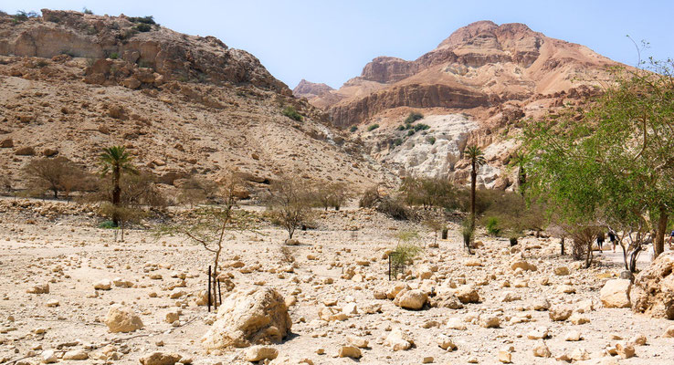 En Gedi, der biblische Ort wo David sich versteckte als er vor König Saul flüchtete