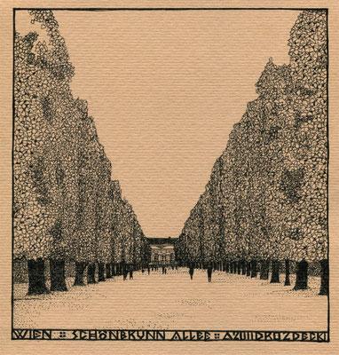 """Вена. Шённбрунналлее"" 16х16см тушь,бумага. 2012г."