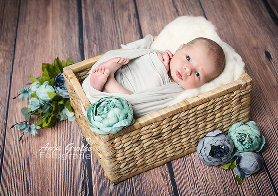 Professionelles Baby-Fotoshooting in Halle