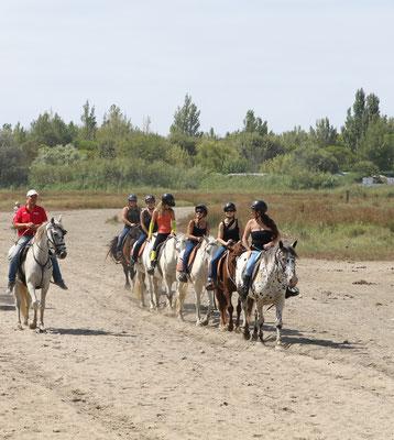 7d7dd7e8e0a3 AbrivadoRanch   promenades et balades à cheval pour tous autour du ...