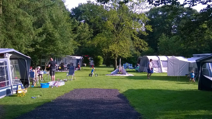 Groene bos camping