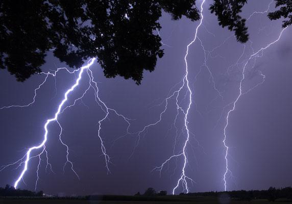 Gewitter/Blitze in Schaffhausen, Schweiz, 2012 08 24 (MP0360) © Michael Pfenning