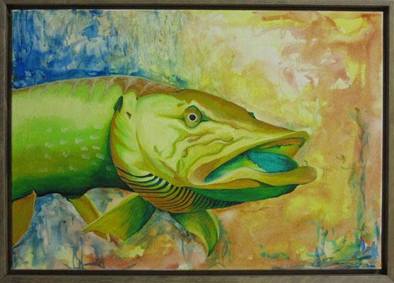 """Künstler: Trentini""""Hecht 2"""", Tusche, Acryl auf Leinen, 50*70 cm, Zell am See 2015"""