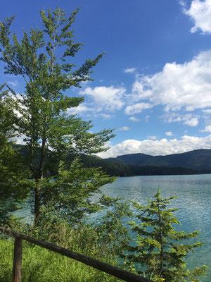 Rückweg am Walchensee entlang