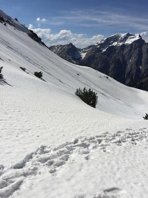 Schnee bergab macht mehr Spass!