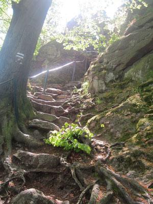 Wejście na Krzyżną Górę