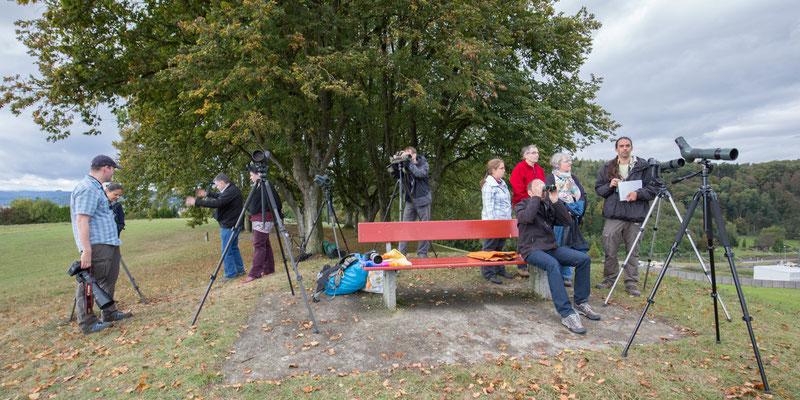 Bird Watch Day 02.10.2016 (Foto: Stephan Trösch)