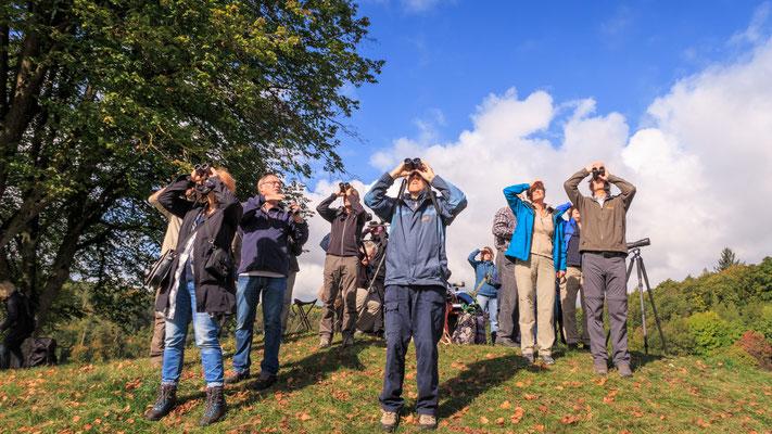 Bird Watch Day 01.10.2017 (Foto: Stephan Trösch)