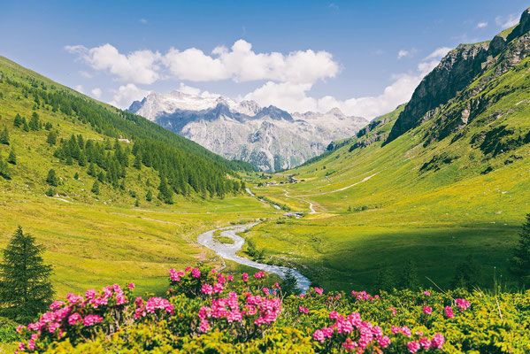 ©Sils-Tourismus_Gian-Giovanoli