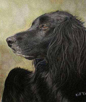 """Portrait """"Paul"""" Pastell"""