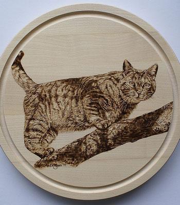 Essbrett Motiv Katze