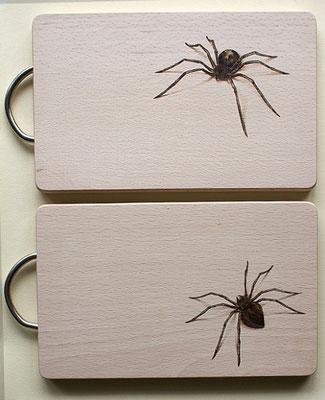 Spinnenbrettchen