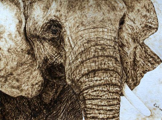 """Portrait """"Elefant"""""""