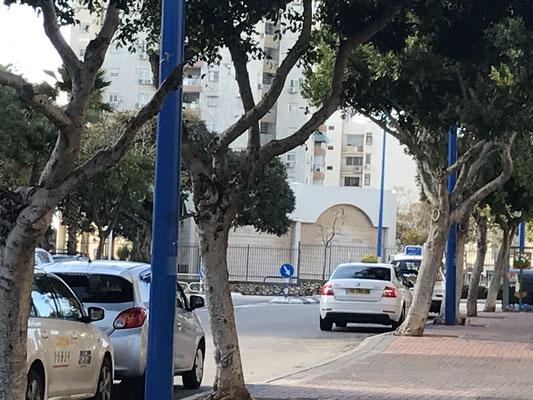 synagogue au bout de la rue