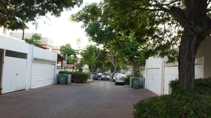 Rue calme et verdoyante
