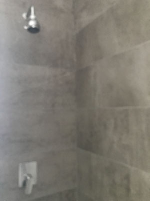 3rd bathroom with shower