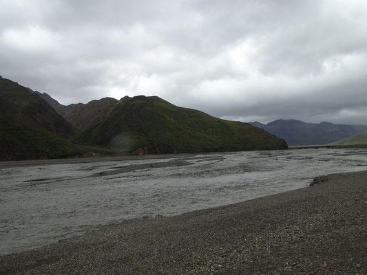 Toklat River im Denali N.P.