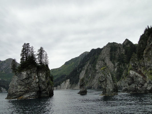die Alaska-Küste ist einfach phantastisch