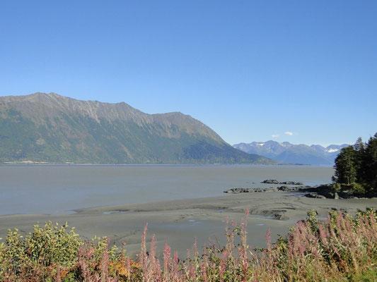 Sicht von unserer Campsite auf den Turnagain Arm des Cook Inlet