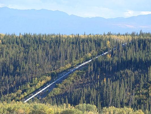 Die berühmte Alaska Pipeline