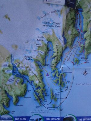 Unsere Tour von Seward zum Holgate Gletscher