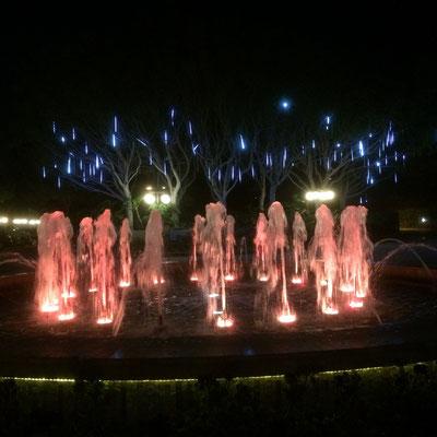 Sheraton Universal bei Nacht