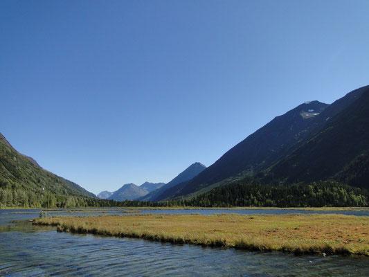 typische Landschaft auf der Kenai Halbinsel