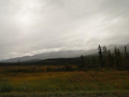 die Alaska Range (mit Gipfeln bis knapp 5'000 m)