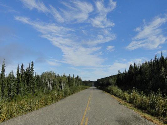 That's Canada - weite Strecken, viele Bäume