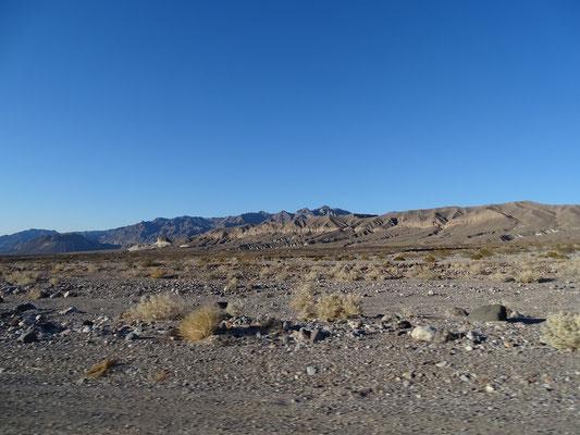 Wüste - immer wieder faszinierend