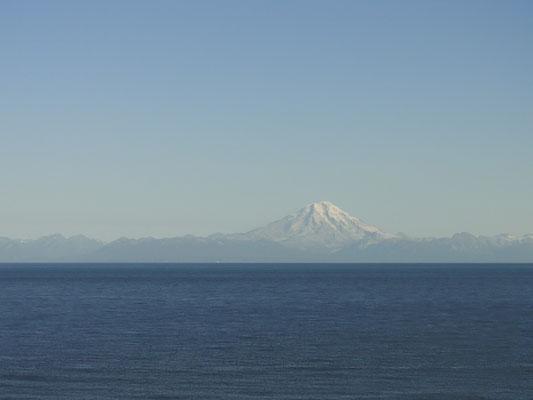 wir können gar nicht genug von der Kombi Cook Inlet / Vulkane bekommen