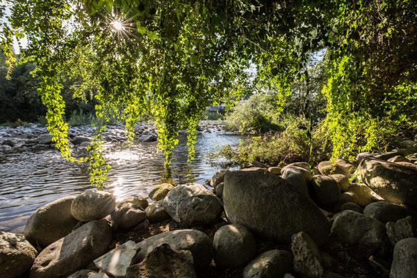 Scorci sul torrente
