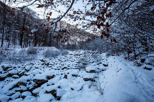 All'area attrezzata di Piedicavallo termina il tratto più ripido del Torrente Cervo